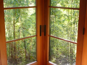 Black Bamboo Window
